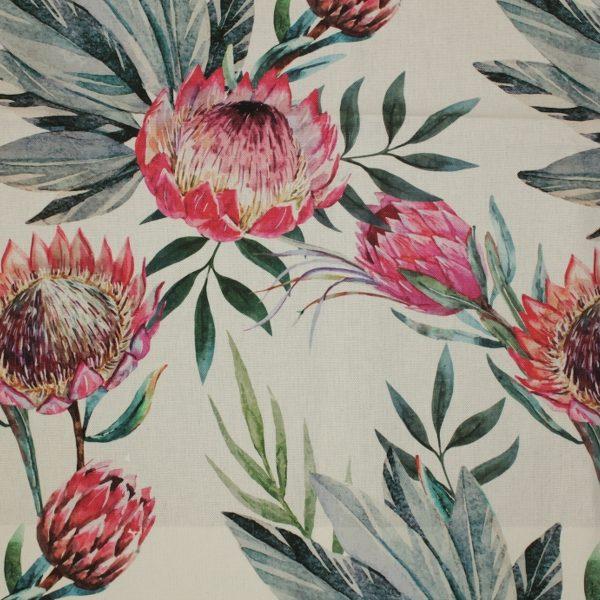 King Protea Duckegg Pink